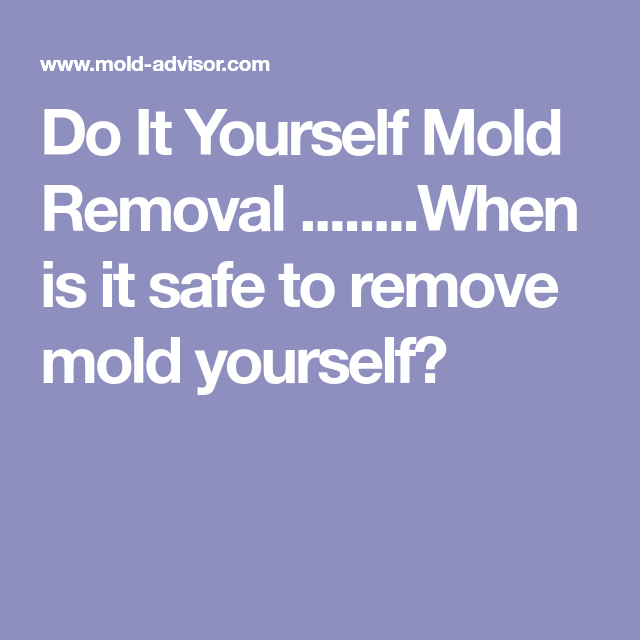 Do it yourself mold removal when is it safe to remove mold do it yourself mold removal when is it safe to remove mold yourself solutioingenieria Images