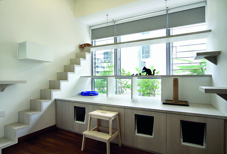 This private apartment unit proves that a cat-friendly home can be ...