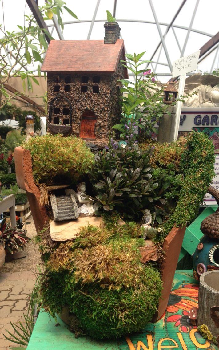 Fairy Garden In A Broken Terra Cotta Pot ~ Rainbow Gardens, Bandera Rd, San
