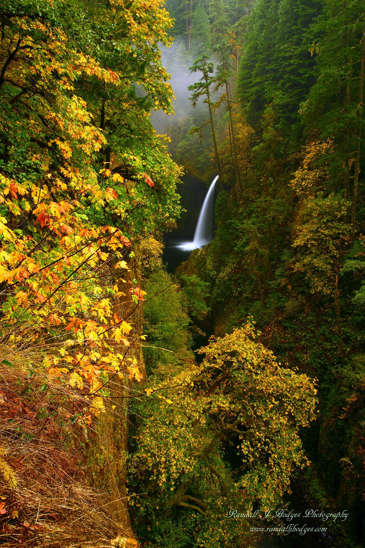 Fall Color and Metlako Falls in The