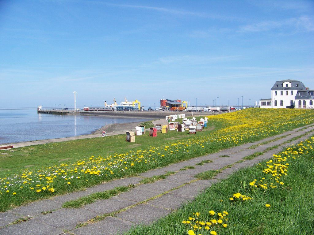 2008 Dagebüll - Hafen, Schleswig-Holstein ☺