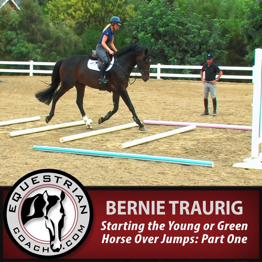 Join Bernie in this series on starting young or green horses over jumps. Focusing on developing a sound foundation for more extensive, future training over fences. The series outlines the progressive exercises and time frame one can adapt to the individual horse. http://www.equestriancoach.com/content/starting-young-or-green-horse-over-jumps-part-one