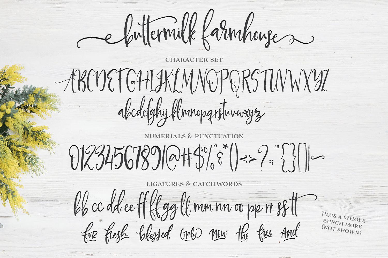 Buttermilk Farmhouse Script | Fonts + Graphic Design Resources