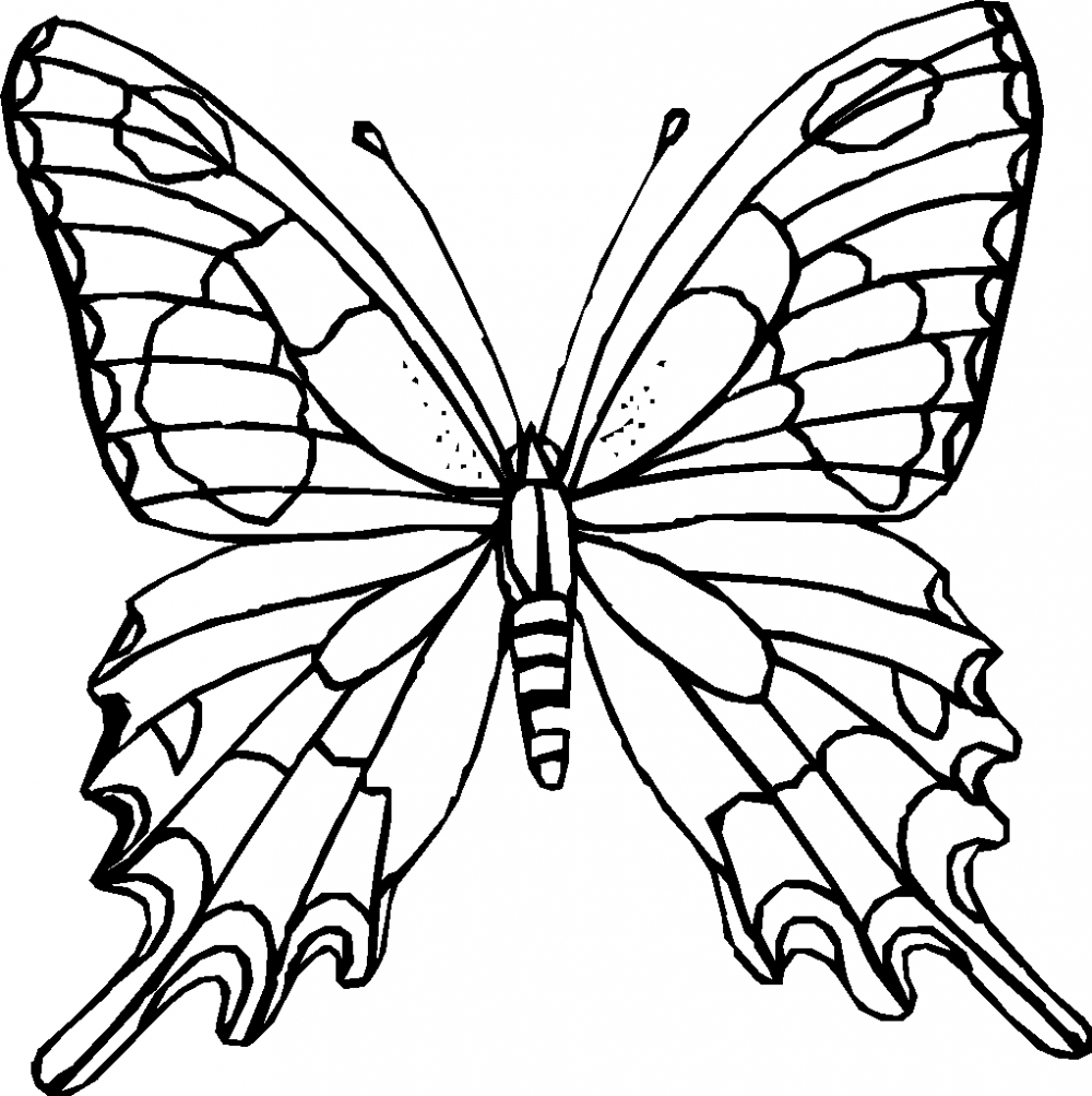 Butterfly Coloring Pages Printable Coloring Pages Butterfly Coloring Page Flower Coloring Pages Butterfly Printable [ 1003 x 1000 Pixel ]