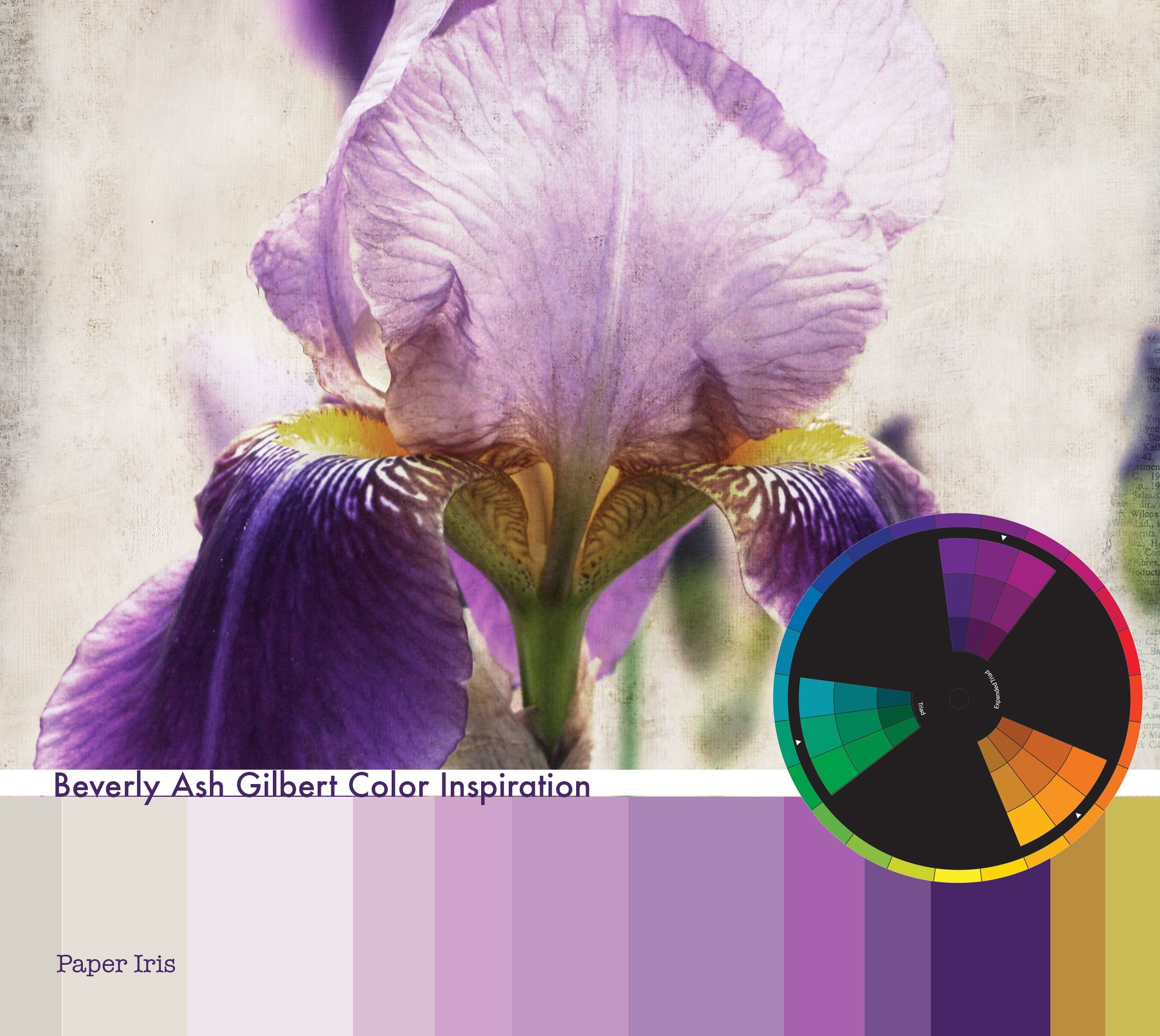 Use Pantone's New Color of the Year: Radiant Orchid in new and lovely ways!  Color Inspiration: Paper Iris #ColoroftheYear, Radiant Orchid, Purple, Color Palette, Color Wheel, Triad