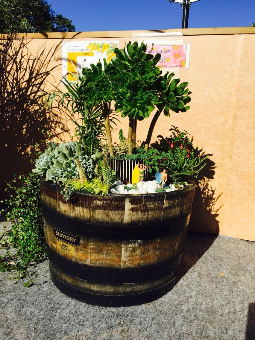 Mini Tropical Garden In A Whiskey Barrel.