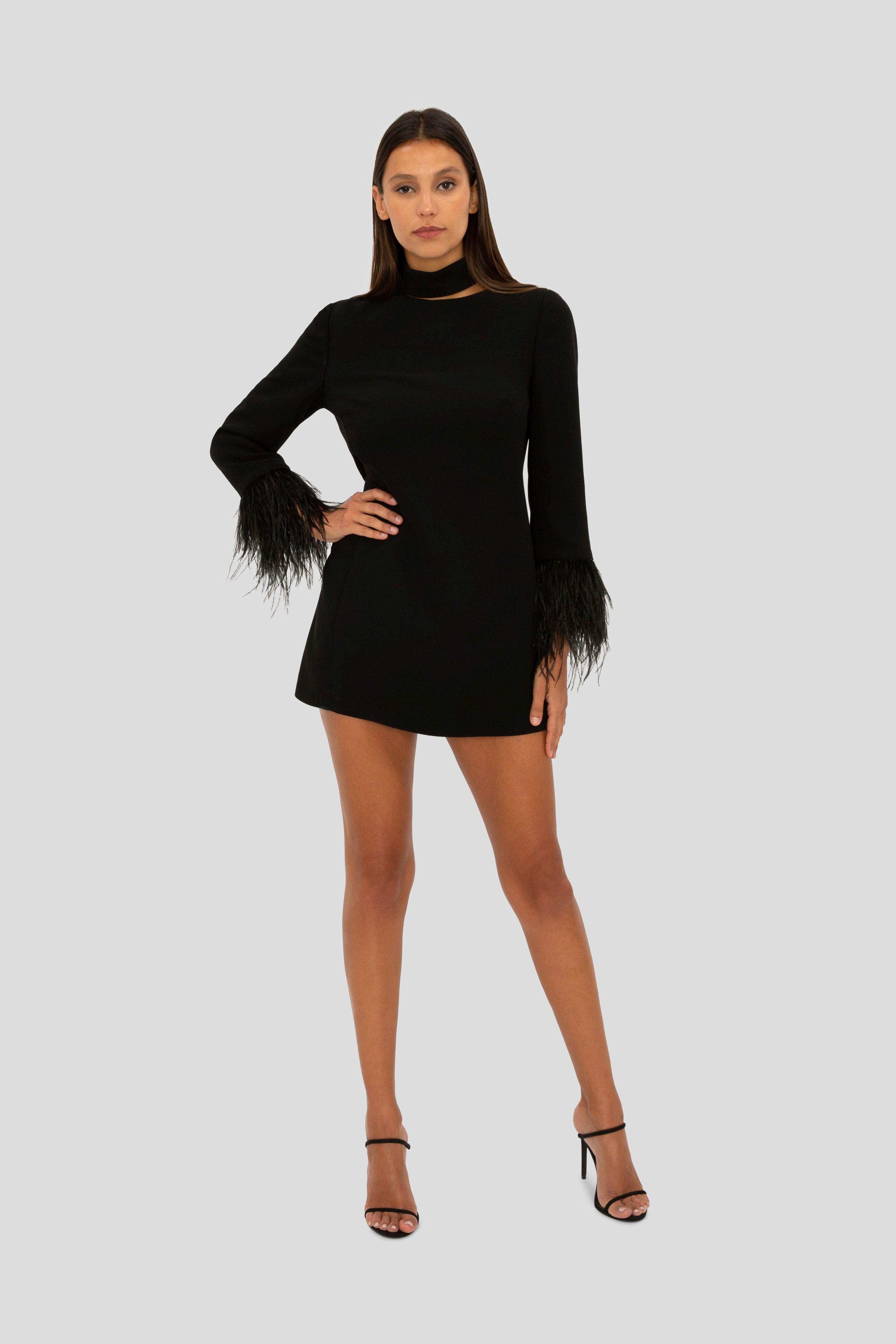Black Feather Trim Mini Dress Mini Dress Fashion Dresses [ 4426 x 2950 Pixel ]