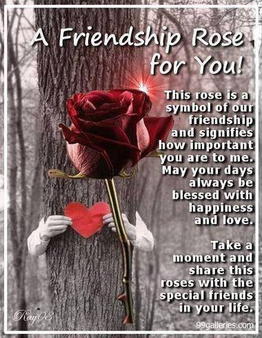 Friendship Rose Quotes Friends Friendship Quotes Friendship