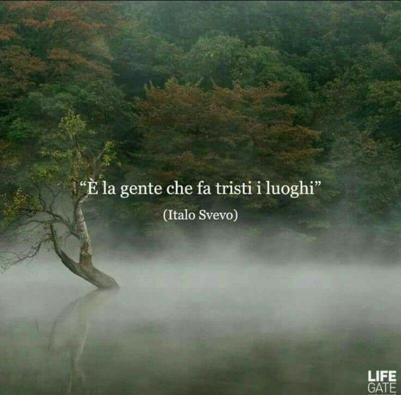 Italo Svevo Lettere Words Quotes Literature Quotes E Italian Quotes