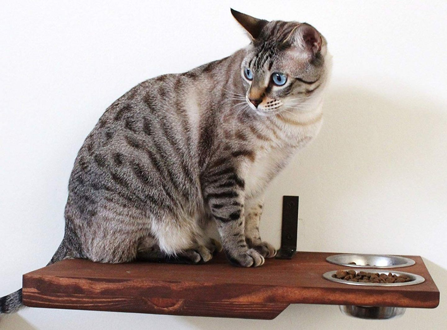 Solid wood cat wall perch with feeding station for cats