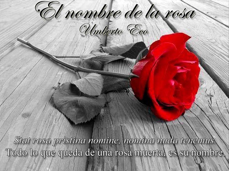 The Most Beautiful Love Song By Your Side Imagen Rosa Portadas Para Facebook Feliz Dia Del Libro