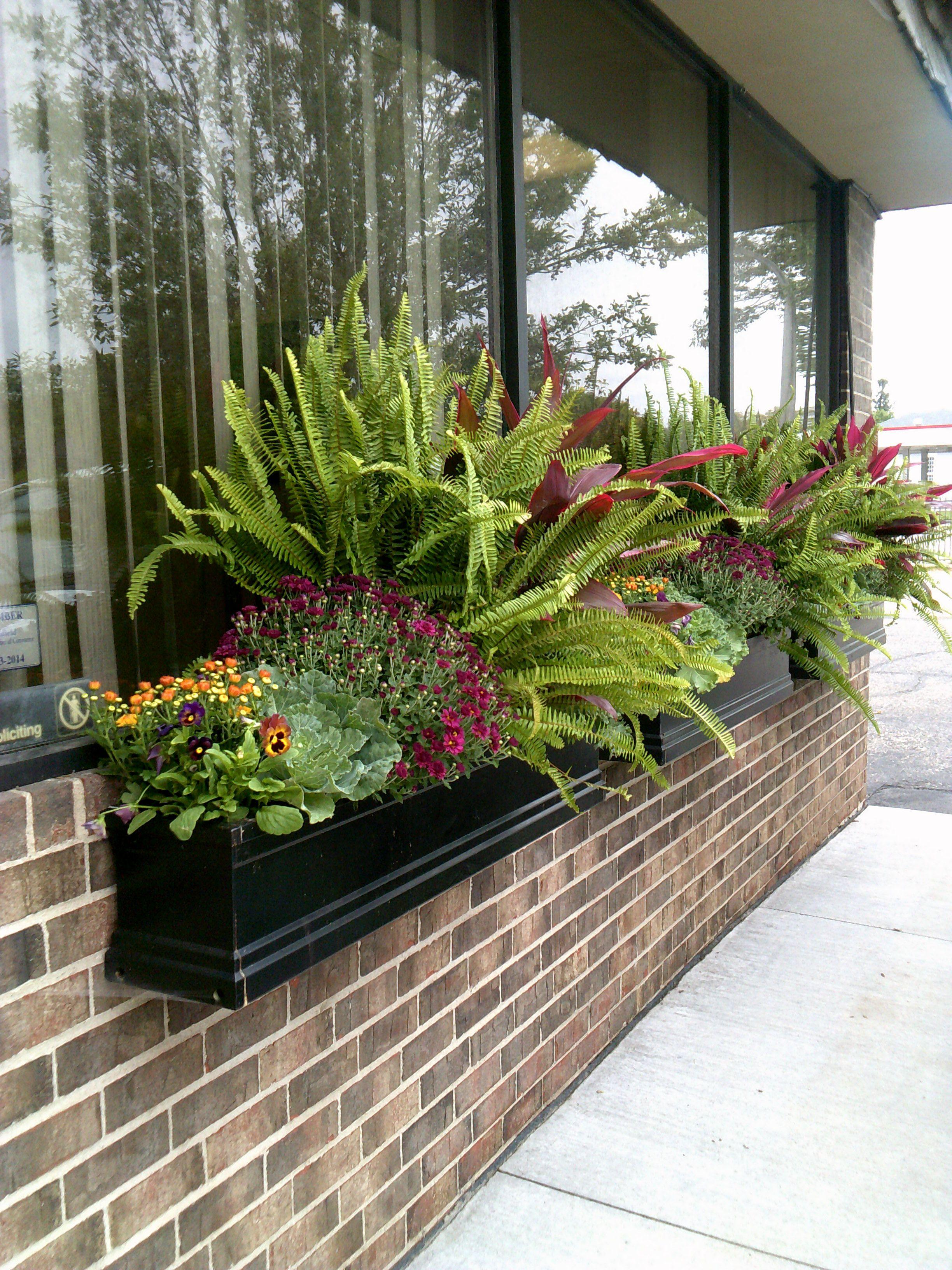 office gardening. Landscaping Ideas Office Gardening