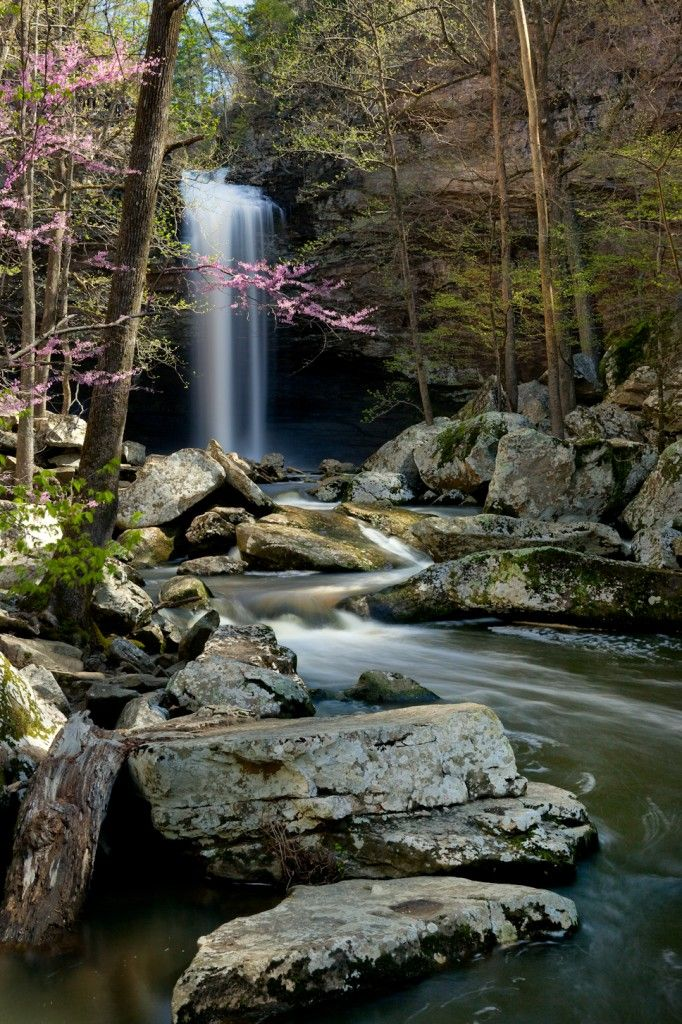 Chutes Victoria: Cedar Falls - Petit Jean State Park Arkansas