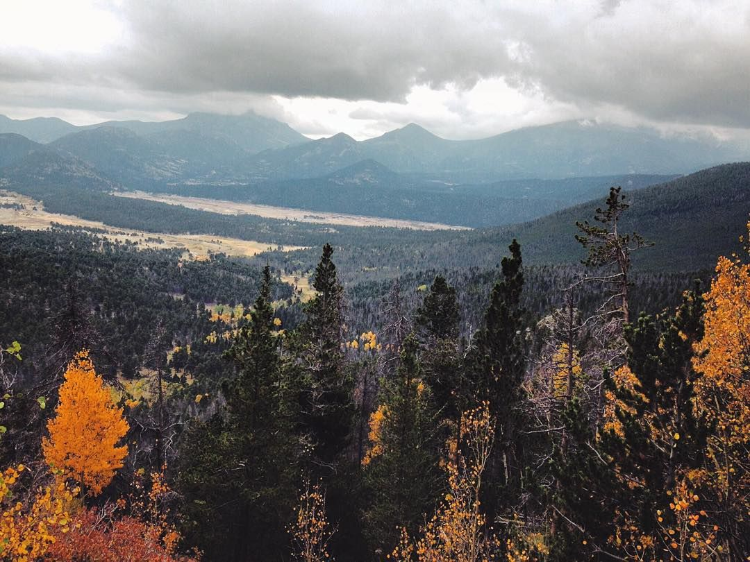 Hoping I haven't missed all the fall colors when I arrive this weekend in Colorado!