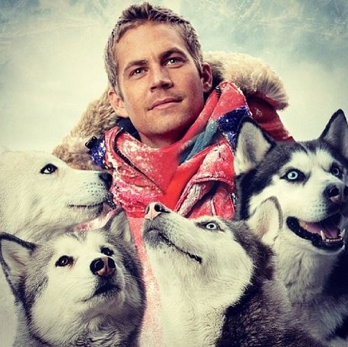 Paul Walker an incredible actor, We miss you so much
