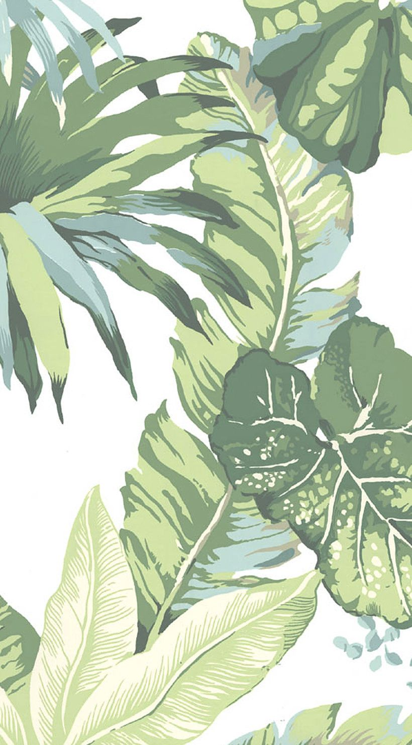 Pin by 🎀 Sofia 🎀 on iPhone wallpapers Palm leaf