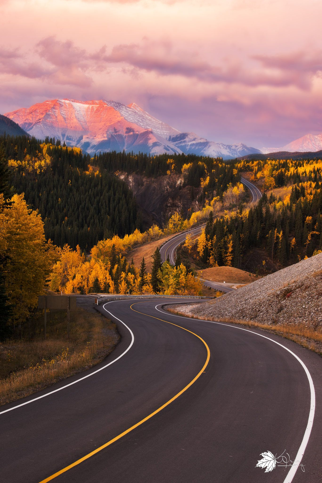 曲径通幽 Beautiful Roads Scenery Nature Pictures