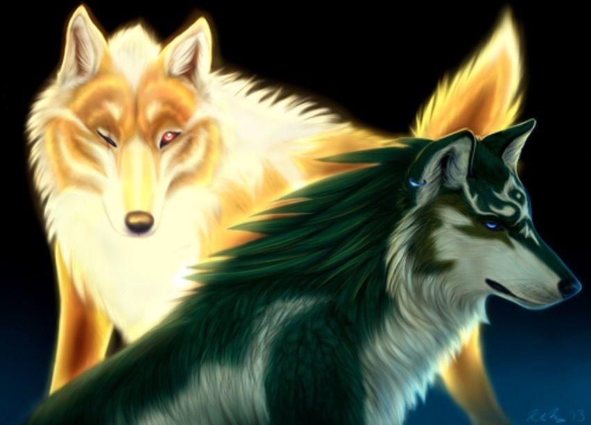 Golden Wolf And Wolf Link Zelda Twilight Princess Legend Of