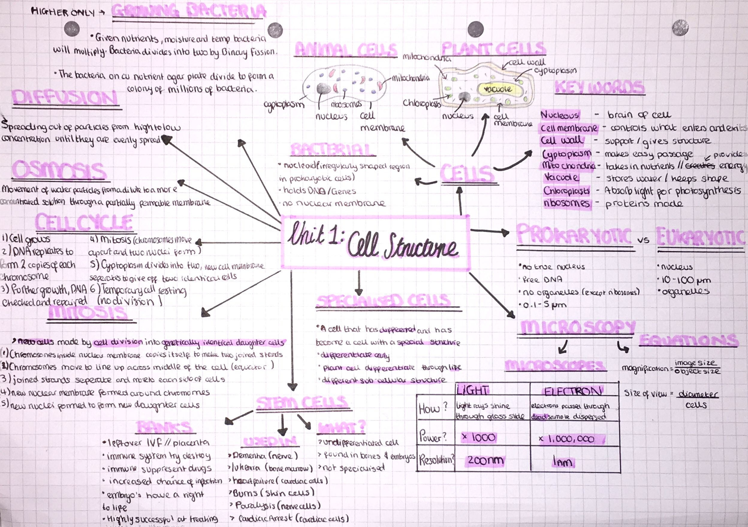 Biology Cell Structure Mind Map | Gcse science revision ...