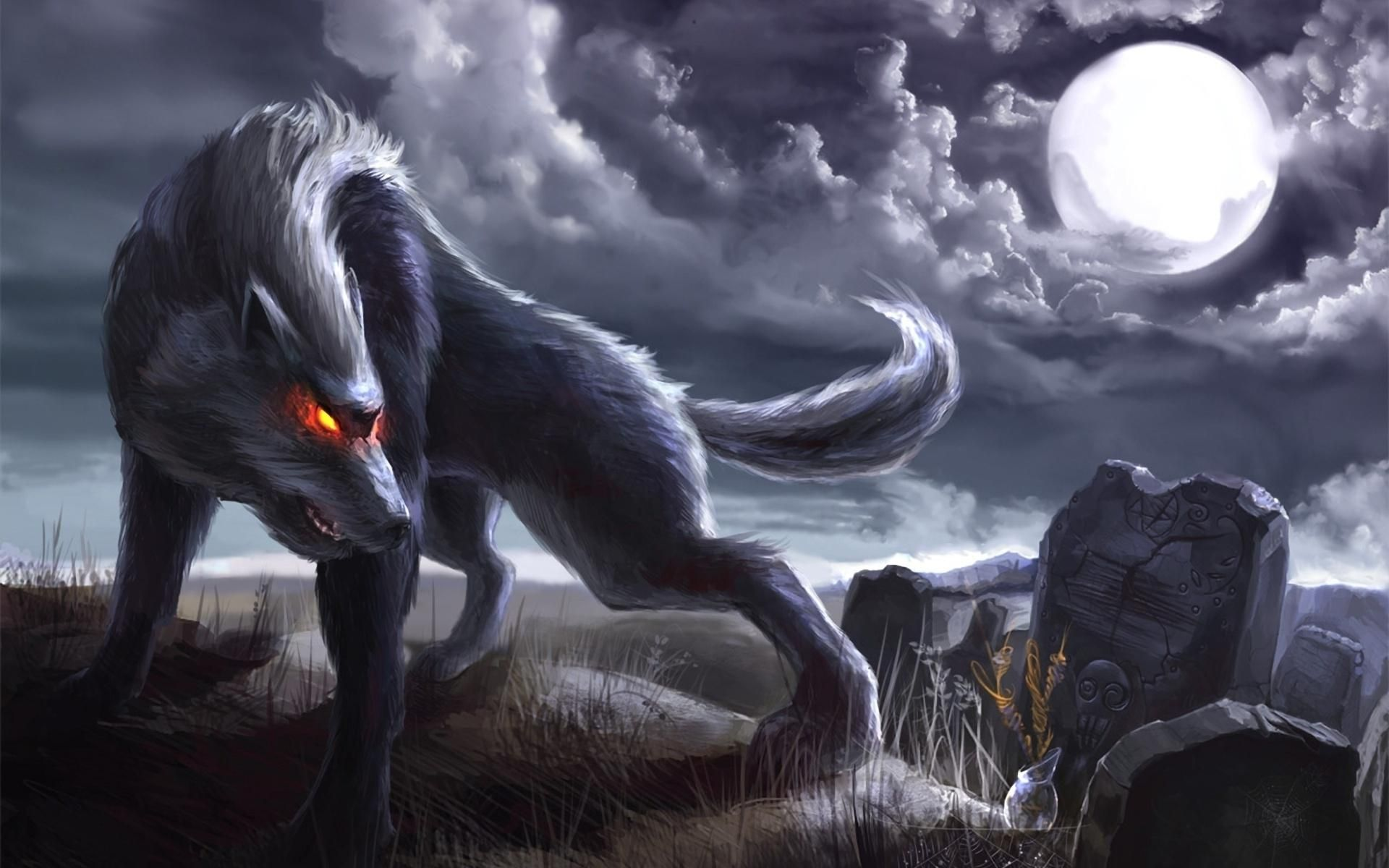 awesomeangrywolfpictures2angryanimewolveswallpaper