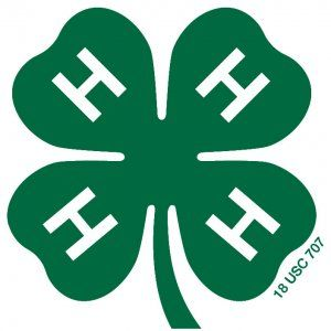 It S National 4 H Week How Did 4 H Share You Into The Individual