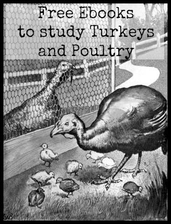 Ebooks from gutenberg.org to study turkeys and poultry in general. #free #publicdomain