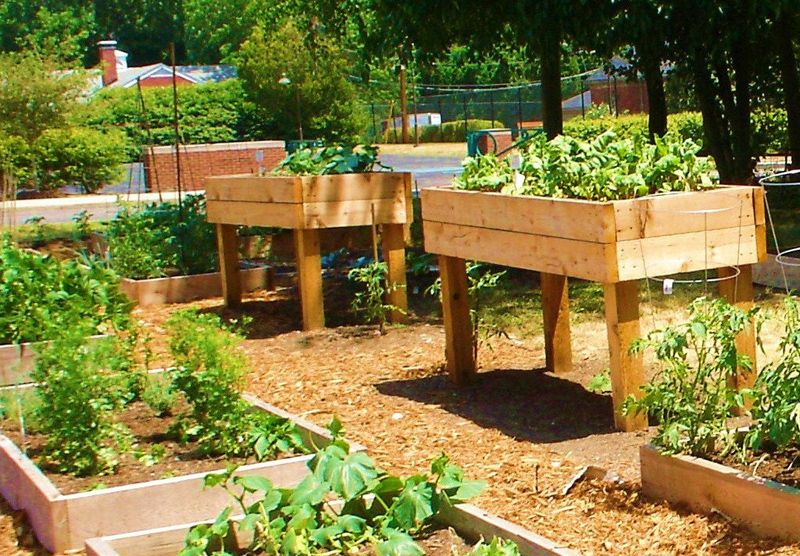 DIY Garden Projects For The Perfect Backyard Above