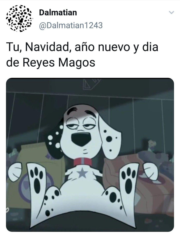 Pin De Dalmata Dalmatian En Memes De Calle Dalmata101 Perros De Disney Dalmata Memes