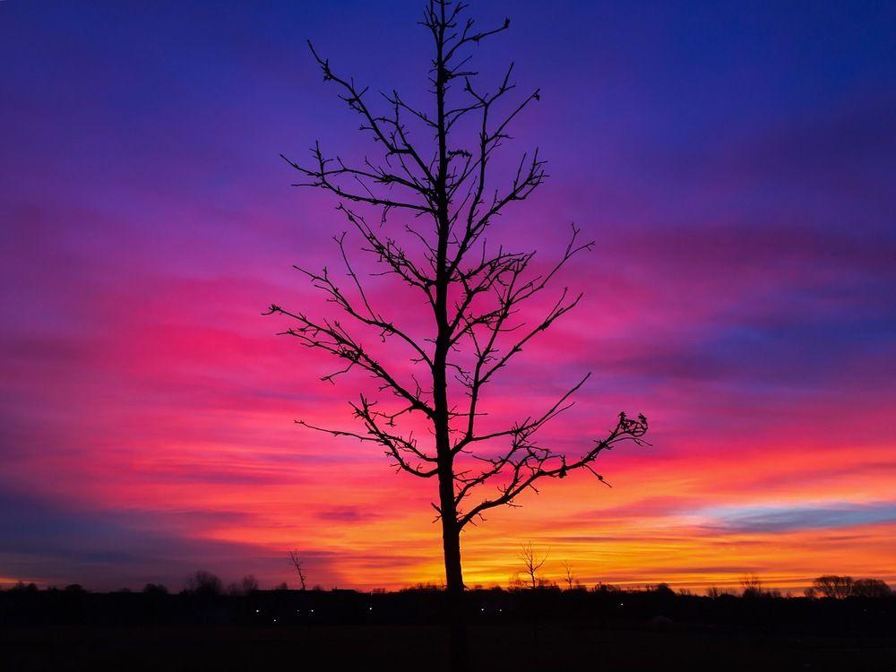 Morning horizon in december pastel sunset watercolor
