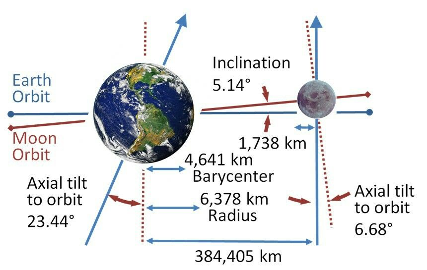Tidal locking results in the Moon rotating about its axis in about the same time it takes to orbit the Earth. Except for libration effects, this results in it keeping the same face turned towards the Earth, as seen in the figure on the left. (The Moon is shown in polar view, and is not drawn to scale.) If the Moon didn't spin at all, then it would alternately show its near and far sides to the Earth while moving around our planet in orbit, as shown in the figure on the right.