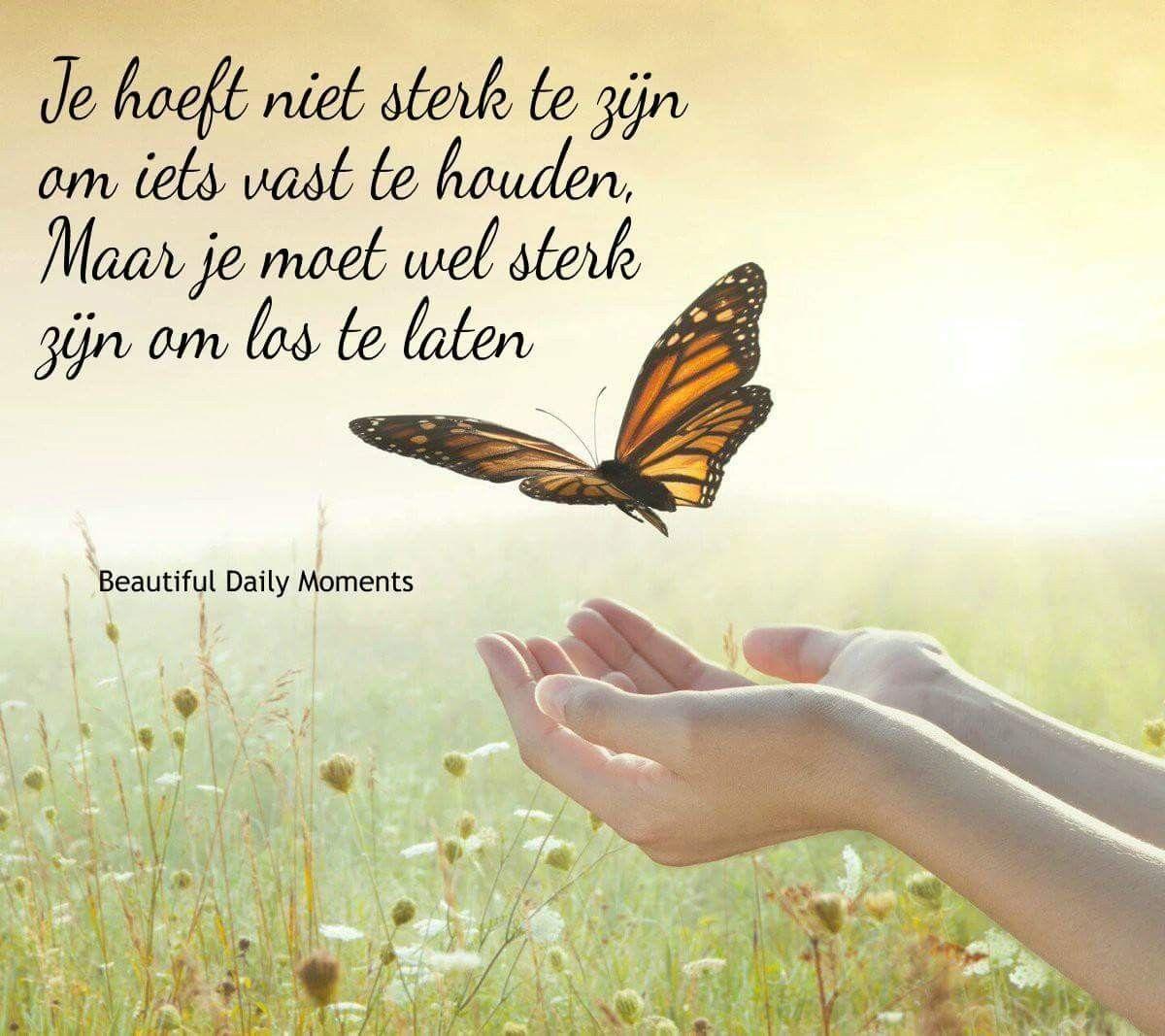 Citaten Wijsheid : Loslaten quotes pinterest mindfulness en