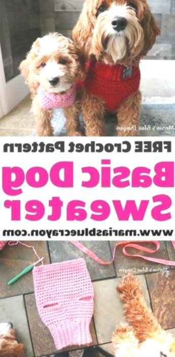 Crochet Dog Sweater - Free Step by Step Tutorial  #crochet #knitting #amigurumi #knit #crochetsweater #crochetponcho #crochetafghan #yarn #crochetscarf #crochetkit #knittingstitches #dogcrochetedsweaters