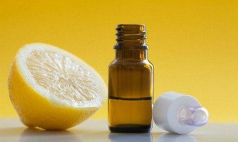 Remedio natural para las pulgas