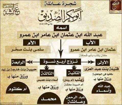 شجرة عائلة أبى بكر الصديق رضى الله عنه و ارضاة Islam Facts Learn Islam Islam Beliefs