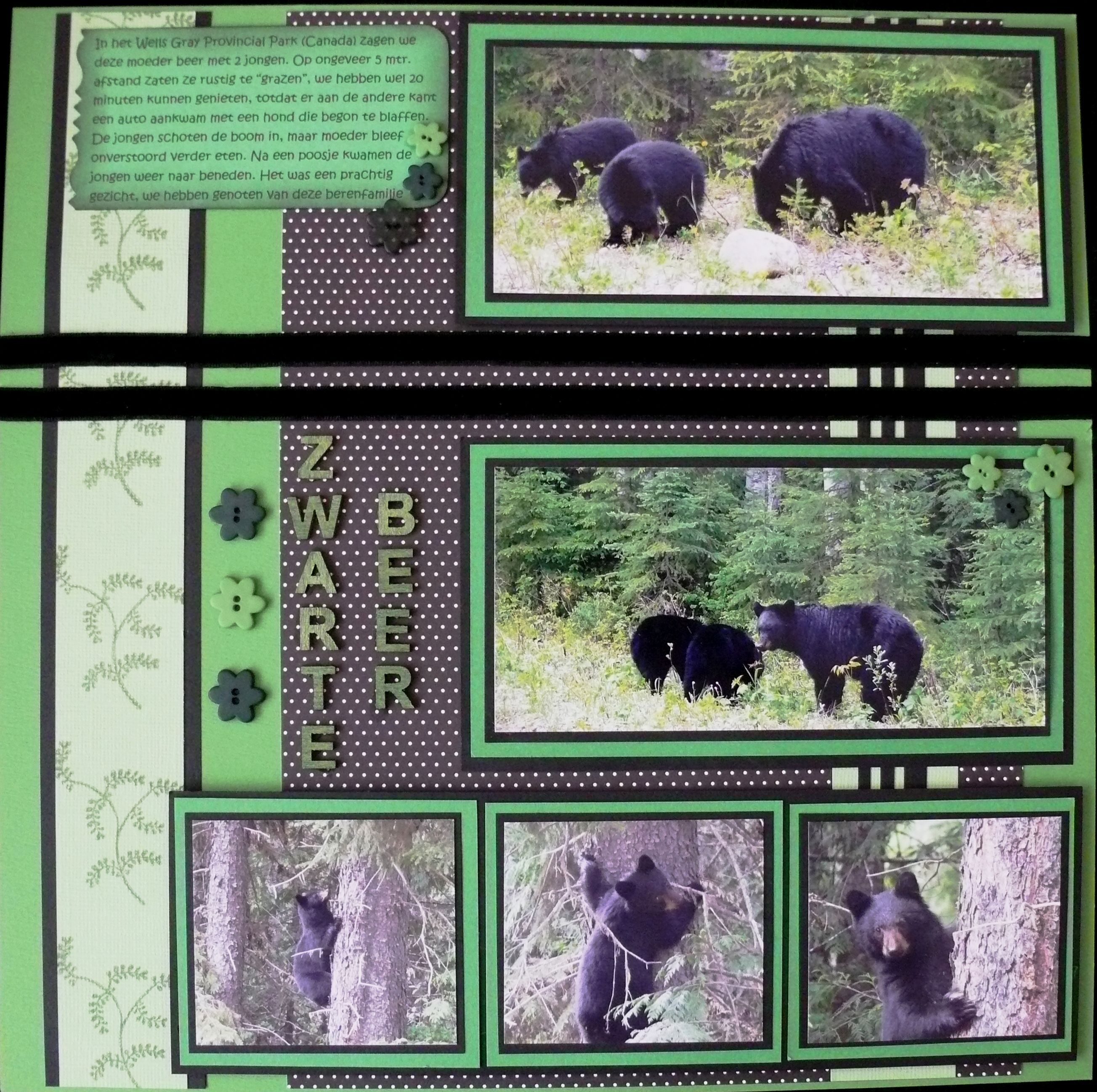 Mirror this to make a double...bear country SD 2011