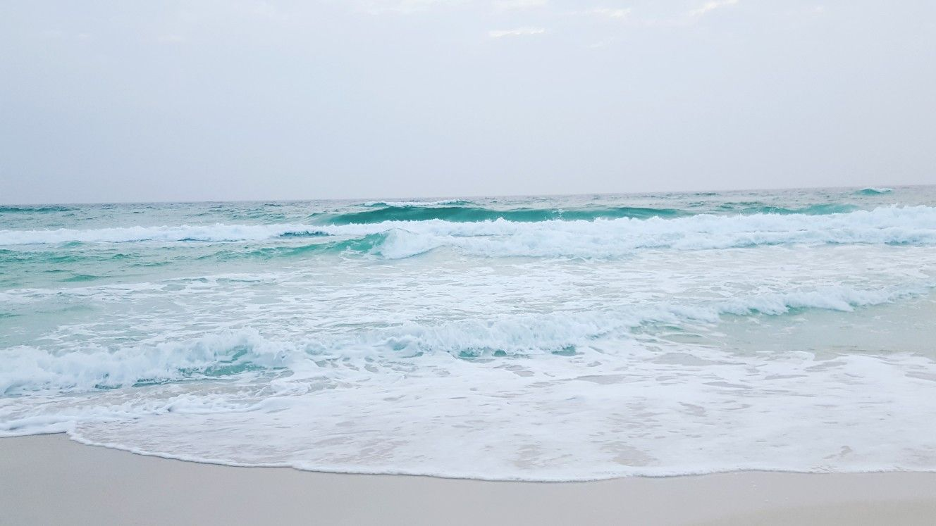 Laguna Beach Fl