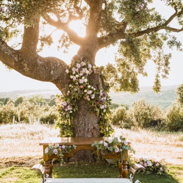 boda, bodas civiles, bodas al aire libre, boda civil, decoración