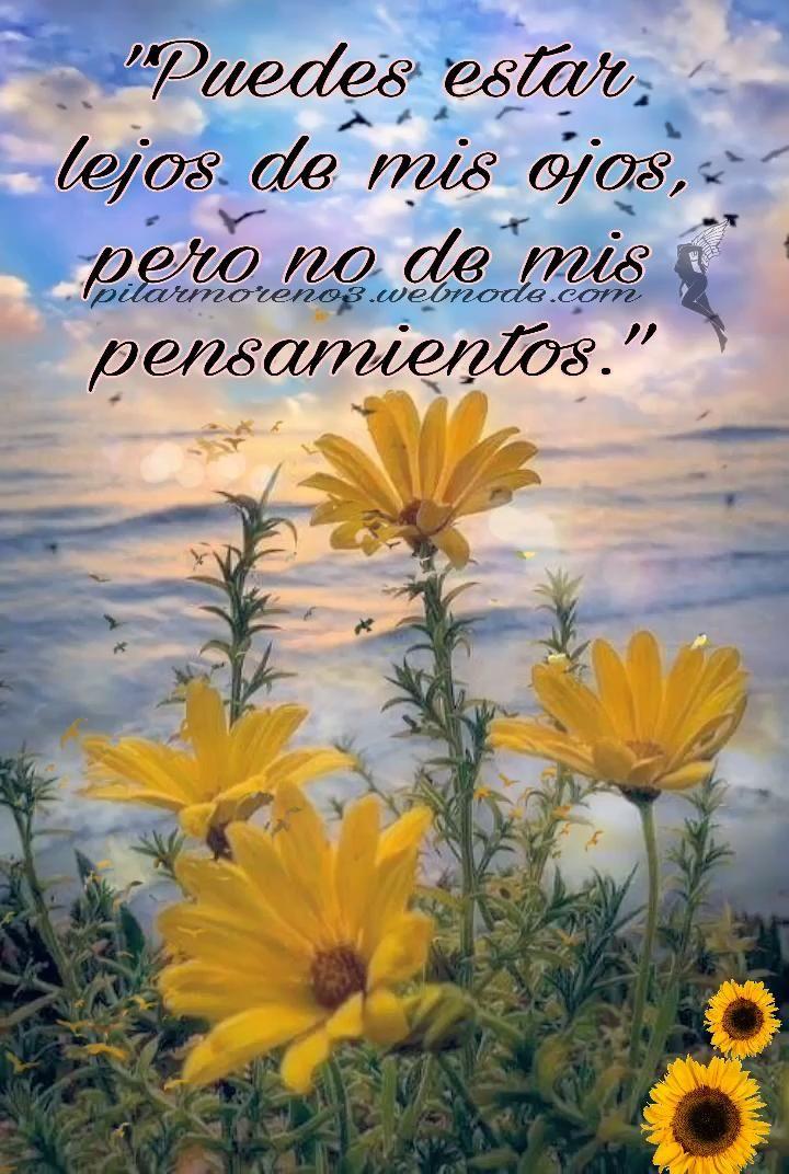 ...y siempre en mi ❤️