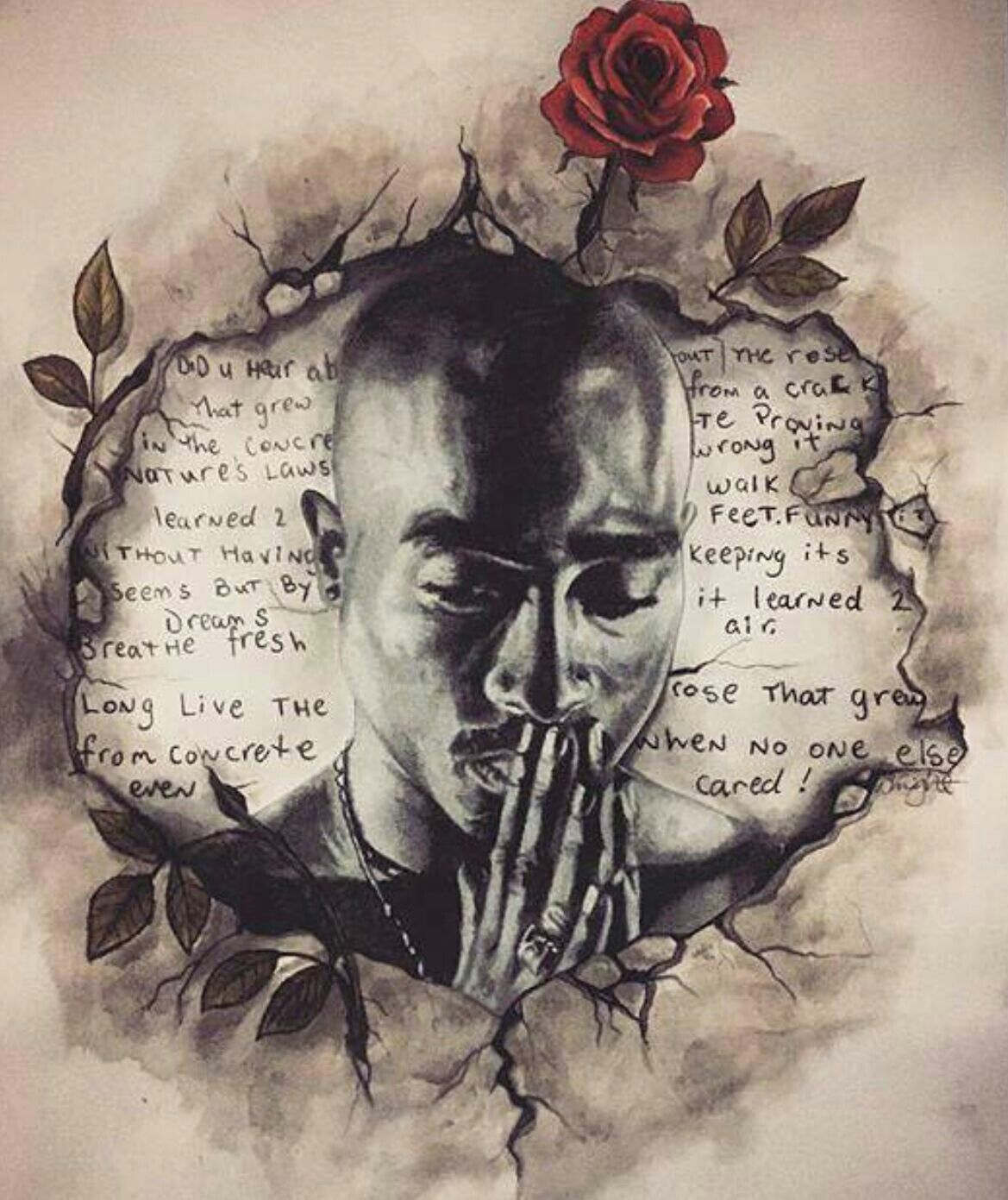 The Rose That Grew From The Concrete With Images Tupac Art