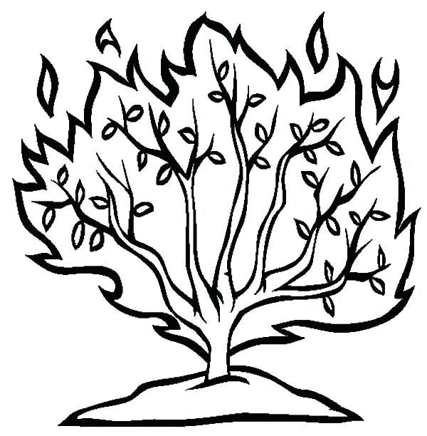 Image Result For Printable Image Of A Bush Burning Bush Bible School Crafts Coloring Pages