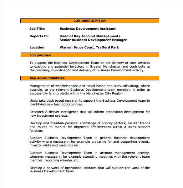 Business Development Job Description Template 10 Free Word Pdf