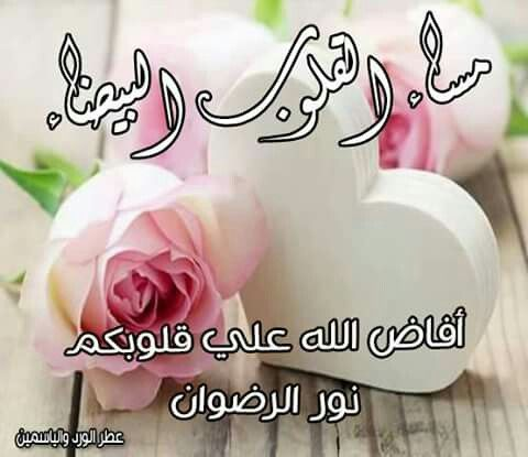 Pin By Nahed Abou El Soud On مساء الخير Good Morning My Love Good Evening Morning Images