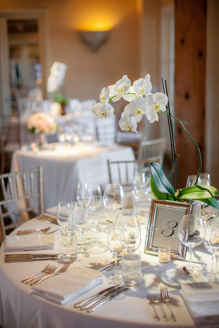 Simple elegant wedding centerpiece ideas with white orchids Clane