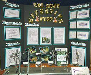 Science Fair Project Layout Random FactsScience Pinterest - Layout of a science fair board