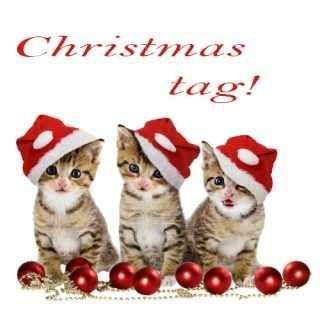 Natale è vicino! Christmas tag! Ciao a tutti! Il Natale ormai è alle porte, perciò è anche ora di post e tag in tema natalizio! Adoro lo spirito natalizio, perciò mi sono divertita a rispondere a queste domande del Christmas tag! #natale #tag #domande