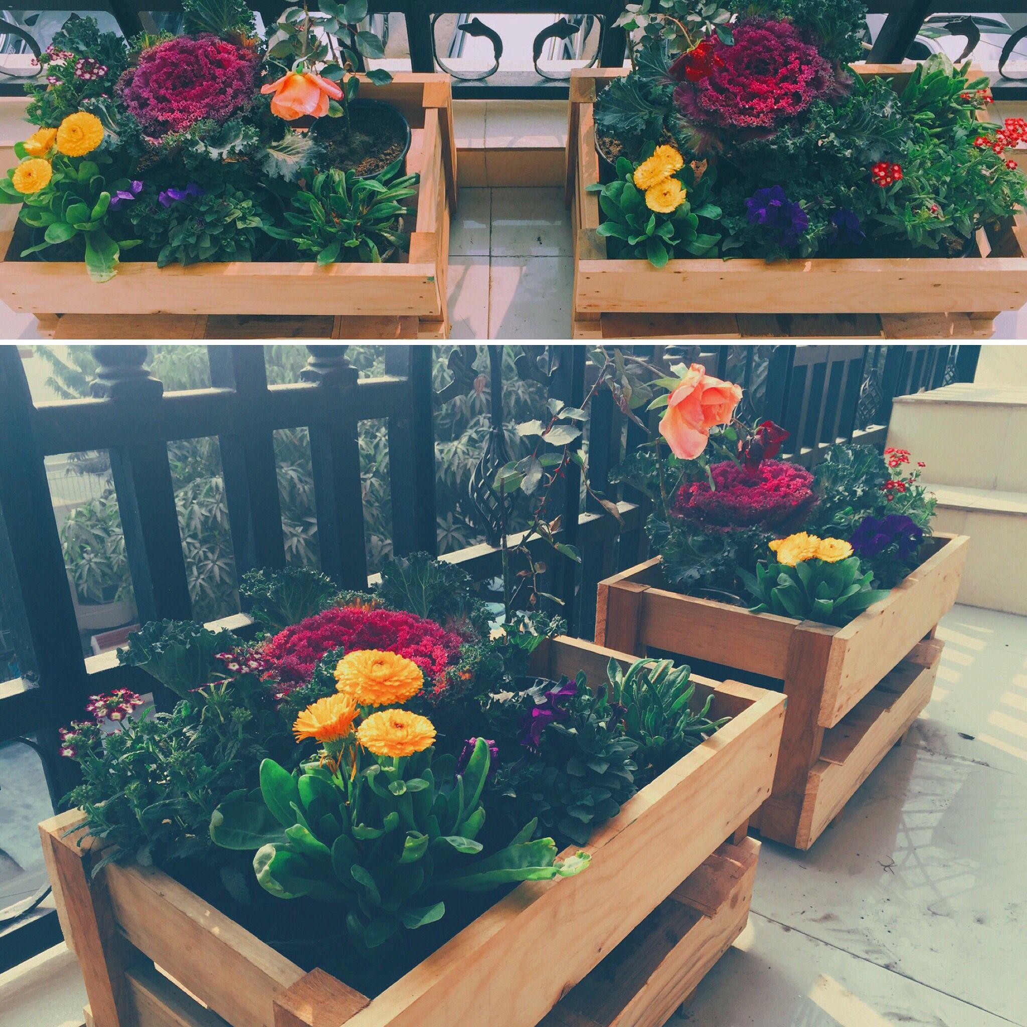 Planters. Outdoor. Plants. Flowers. Wood. Diy.