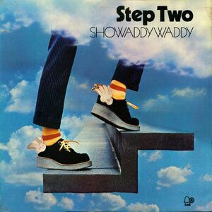 I Loved Showaddywaddy Up Until Here Seeing Them Play Chuck Berry S Rock N Roll Music Was Fun Then It Was Poppy In Drap Lp Covers Favourite Vinyl In 2019