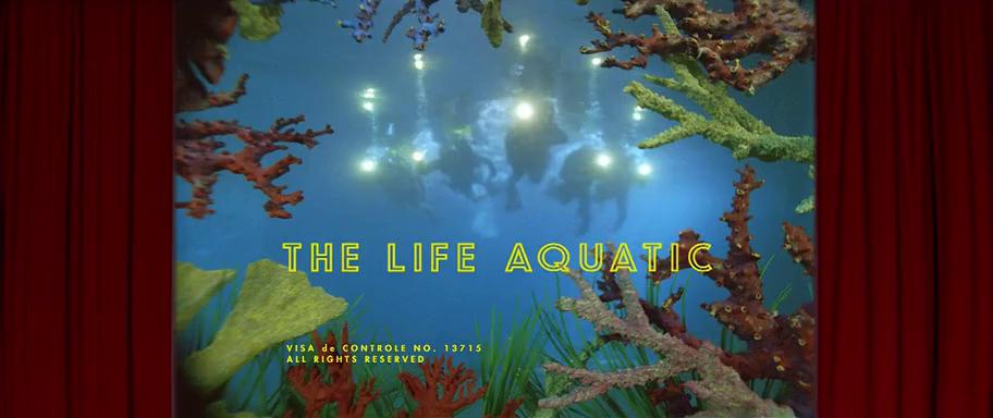 The Life Aquatic (2004) | Life aquatic, Steve zissou, Zissou