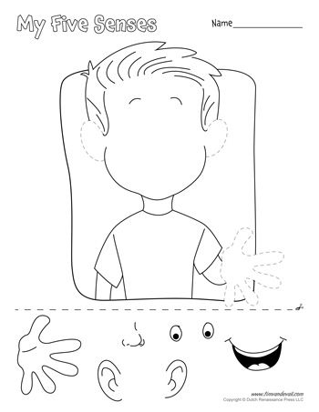 A printable five senses matching worksheet for preschool