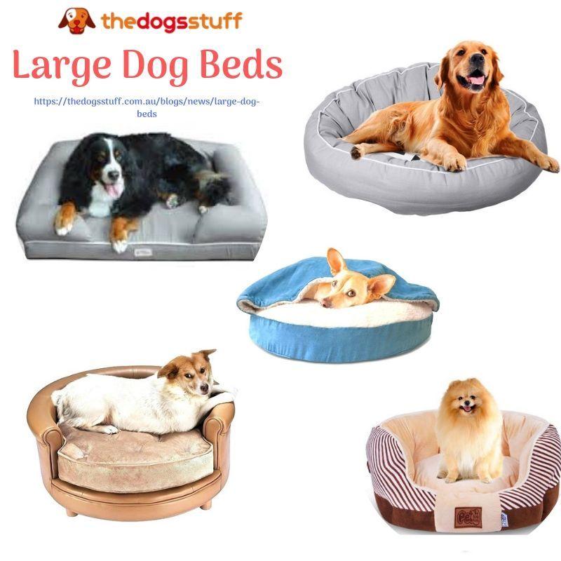 Large Dog Beds Dog Bed Large Dog Bed Extra Large Dog Bed